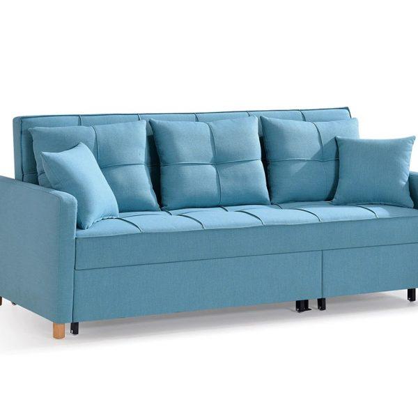 Full Sleeper Sofa Cum Bed