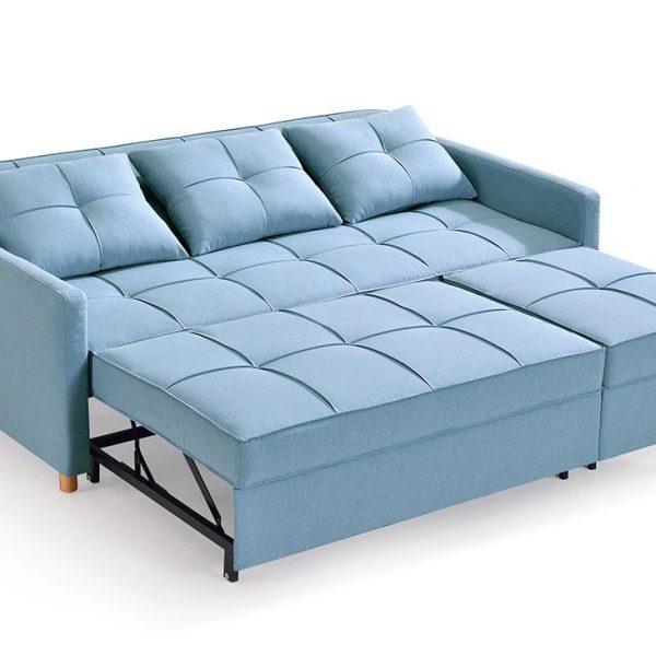 Full Sleeper Sofa Cum Bed design