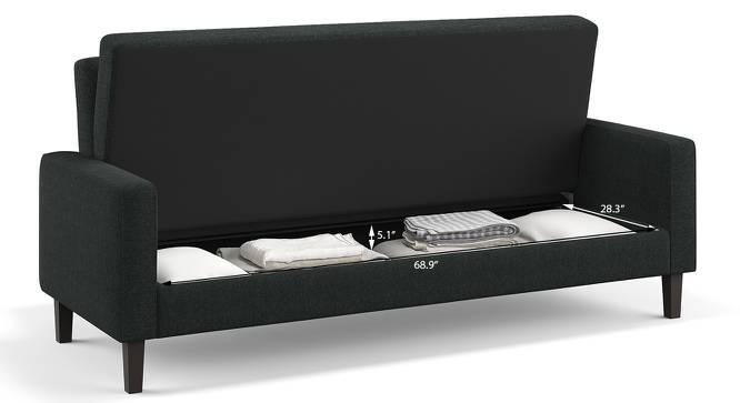 Hidden Storage Sofa Cum Bed